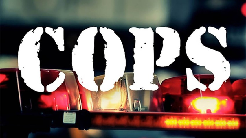 Image of the COPS TV show logo