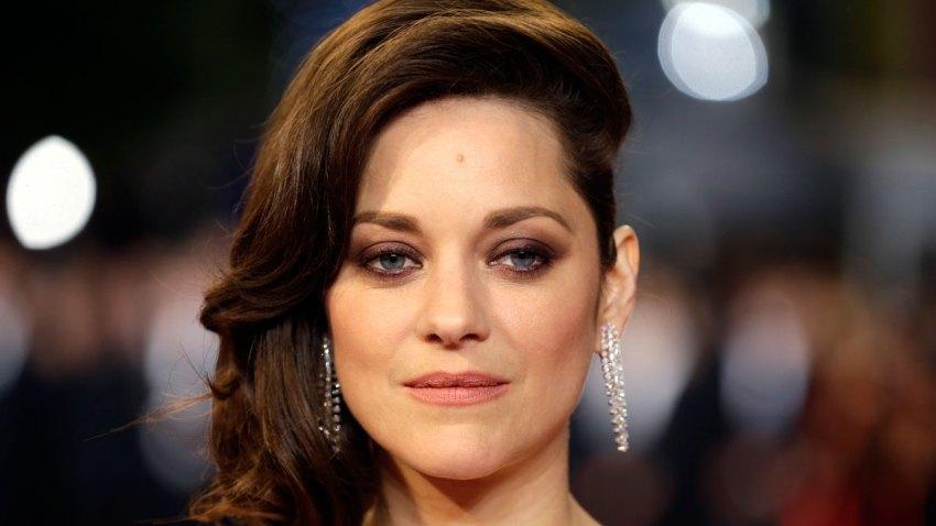 Pitt Jolie Divorce Marion Cotillard