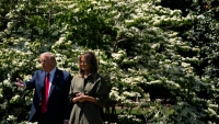 Trump Seeks to Scale Back Environmental Reviews for Projects
