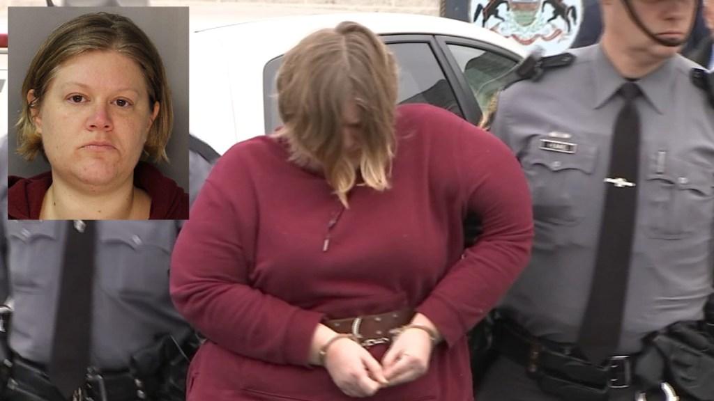 Berks County Mom Arrest Children Killed Lisa Snyder Mug