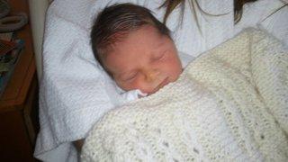 Brucker Baby closeup