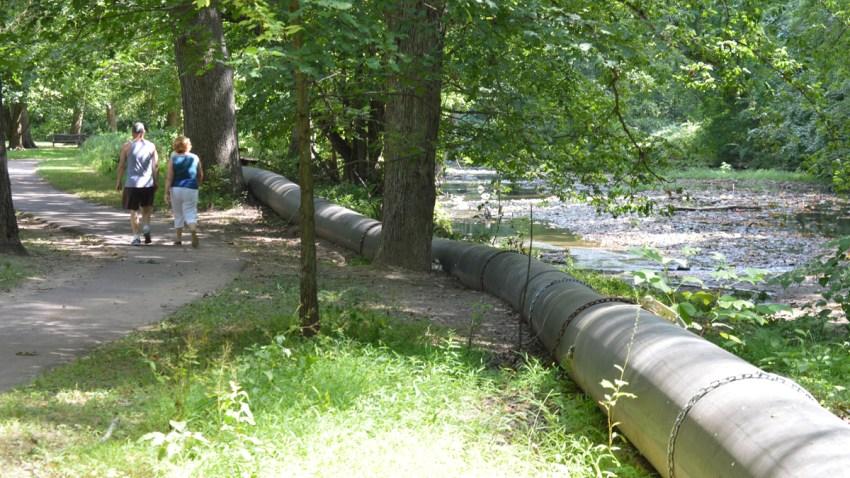 Cheltenham sewer black snake 2