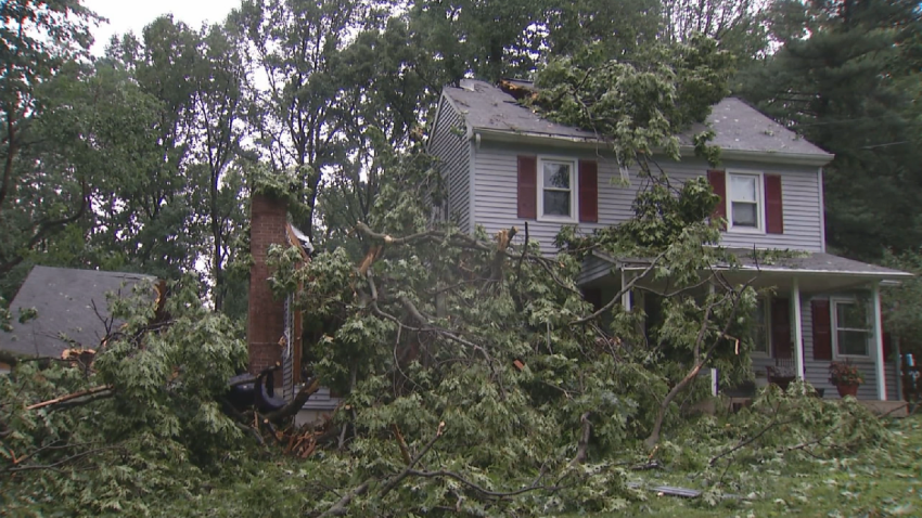 Chester Heights Tree on House Storm