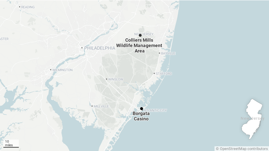 The distance between Colliers Mills Wildlife Management Area and the Borgata resort.