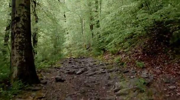 Fairmount Park Trail Generic Trail Generic Park