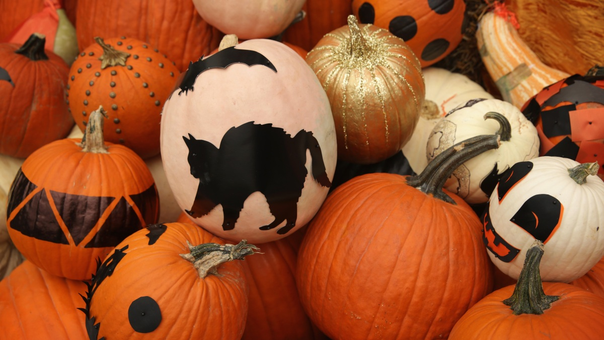 Halloween During a Pandemic: CDC Ranks Risk Level of Holiday Traditions
