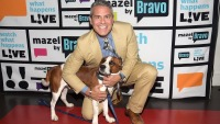 Andy Cohen Announces That He Has Re-Homed Adopted Dog Wacha