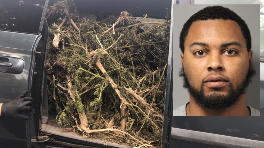 Marijuana Stolen Van Jaquell McDonald Dover