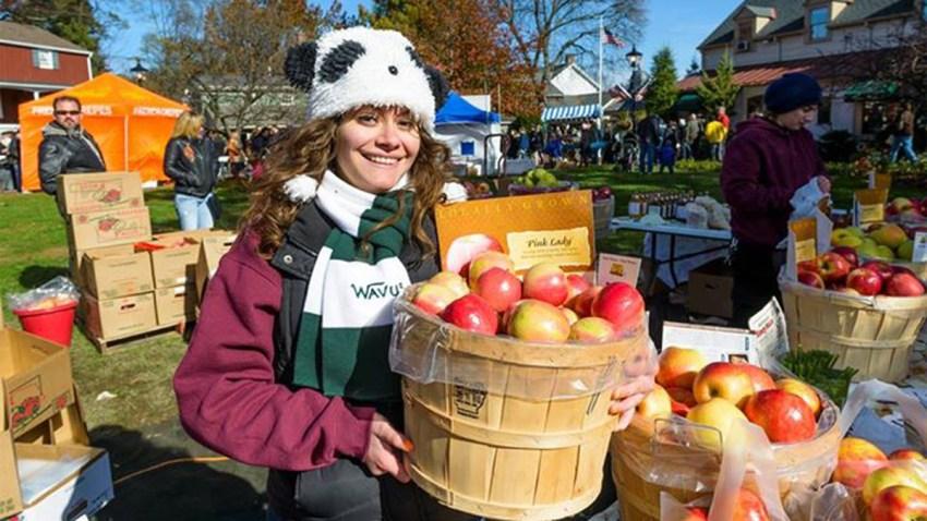 USE apple festival peddlers village
