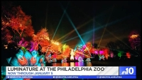 Philadelphia Zoo Revamped with a Light Display
