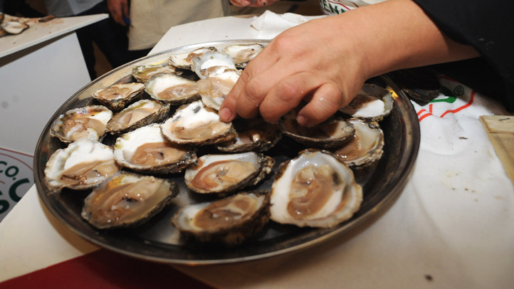oysters04072013