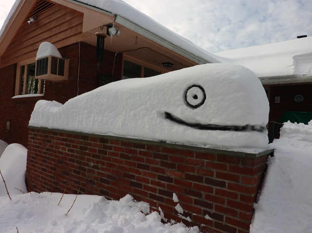 snow whale