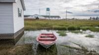 Secluded Chesapeake Bay Island Keeps Eye on Virus From Afar
