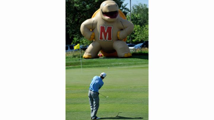 testudo golf