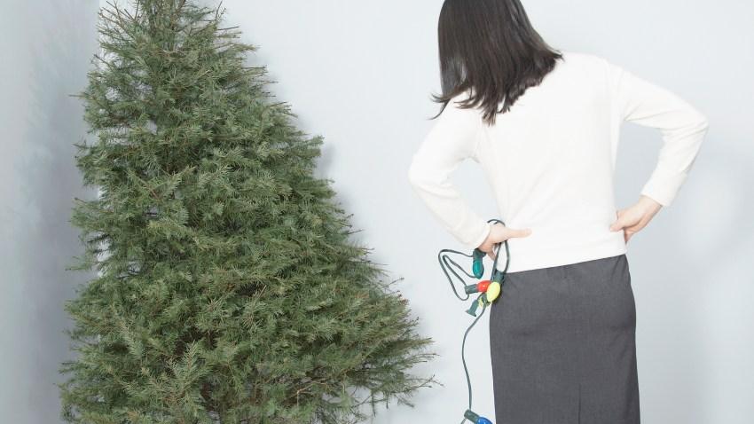[PHI] Christmas tree sloopy