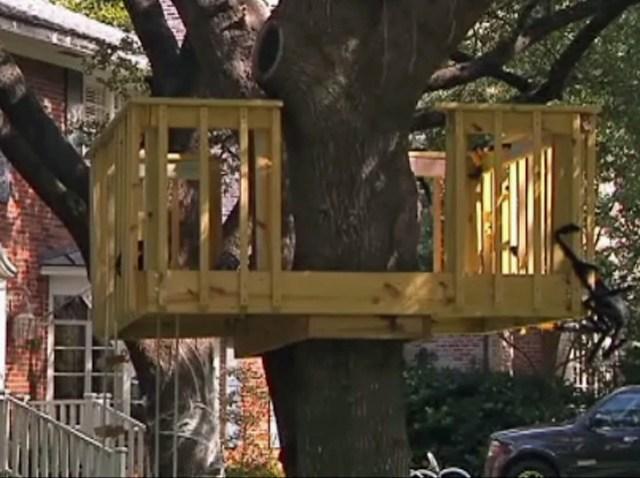 university-park-treehouse
