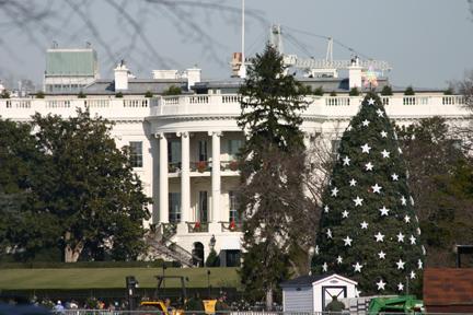 white_house_christmas_tree