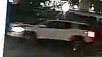 Hit-And-Run Kills Woman in Wyncote