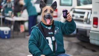 Eagles Fan in Dog Mask