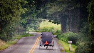 Horse-drawn buggy on road