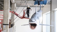 The Last 'Jaws' Model Just Gnashed Into the Academy Museum in LA