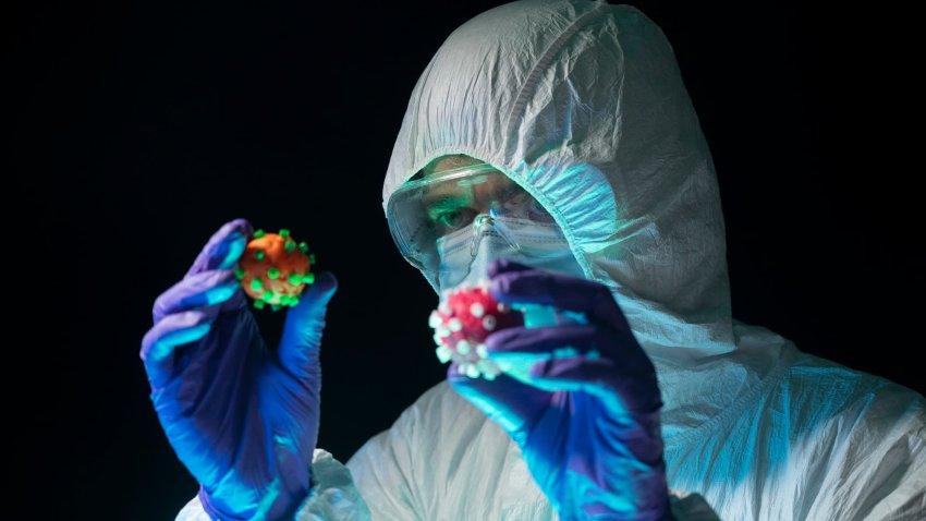 Un científico compara dos coronavirus