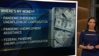 Where's My Money? Why Some Unemployment Payments Have Paused