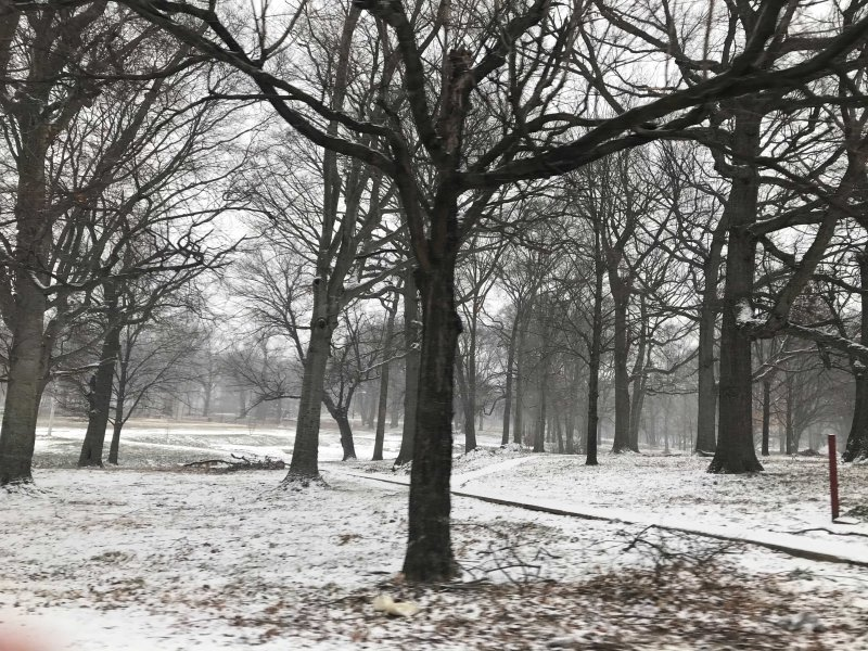 Your Photos: First Round of Snow Moves In