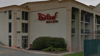 """A wall reads """"Red Roof inn & suites."""" Balconies can be seen on each side of the wall, as can a hedge in front of it."""