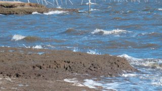This March 30, 2021, photo shows waves eroding the shorefront in Little Egg Harbor Township, N.J. The state is studying its shorelines to compile a list of future coastal protection projects that could also help reduce New Jersey's contribution to climate change.
