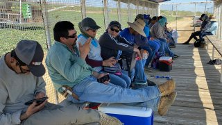 Farmworkers at Del Bosque Farms take a break from picking melons