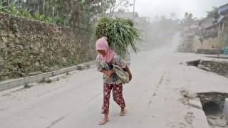 A woman carries grass to feed her cattle as she walks through volcanic ash from the eruption of Mount Merapi in Dukun, Central Java, Indonesia, Monday, Aug. 16, 2021. The volcano is the most active of more than 120 active volcanoes in Indonesia and has repeatedly erupted with lava and gas clouds recently.