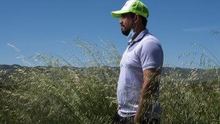 visa immigrant farm laborer
