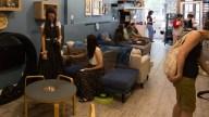 Brooklyn Cat Cafe