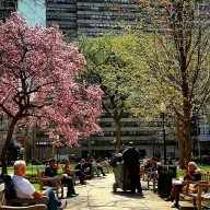 [phillygram] #weekday #spring #lunch #hour #in #rittenhouse #square #philly #igphilly #phillygram #philadelphia #larkvoorhees #markpaulgosslear