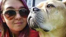 'Bucket List' Dog Dies in Owner's Arms