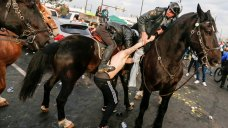 Man Accused of Punching Police Horse at Eagles Tailgate