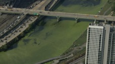 What Turned the Schuylkill River Green?