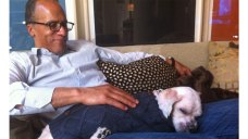 Lester Holt Talks Clear the Shelters