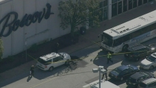 Woman Struck and Killed by Bus in Front of Shopping Center