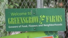 Philly Turning Green? New Proposal Encourages Composting in City