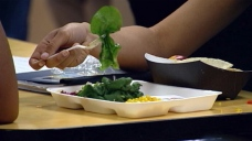 PA School District Threatens Foster Care Over Unpaid Lunches