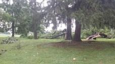 Storms Hit Area as Heat Wave Breaks