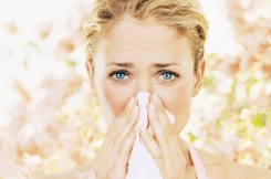 Allergies Blow: Tips to Survive the Season