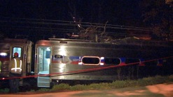 Tree Stops SEPTA Train