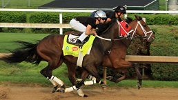 Top Moments in the Race to the Triple Crown