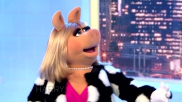 Miss Piggy on 'Harry'