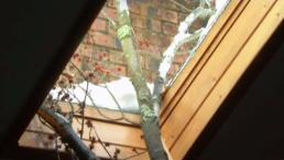 Nor'easter Sends Branch Through the Skylight at NJ Home