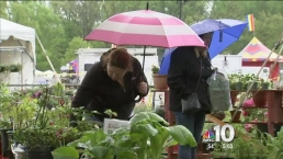 Wet Weather Puts Damper On Delaware Events