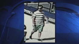 Man Attempted to Kidnap Young Girl at U.S. Open Kids' Day Event: Police